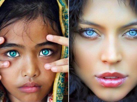 Đôi mắt xanh đẹp nhất thế giới- Lý già vì sao mắt có màu